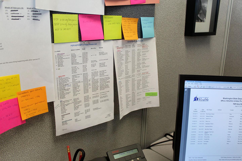 office-paper-tg-web